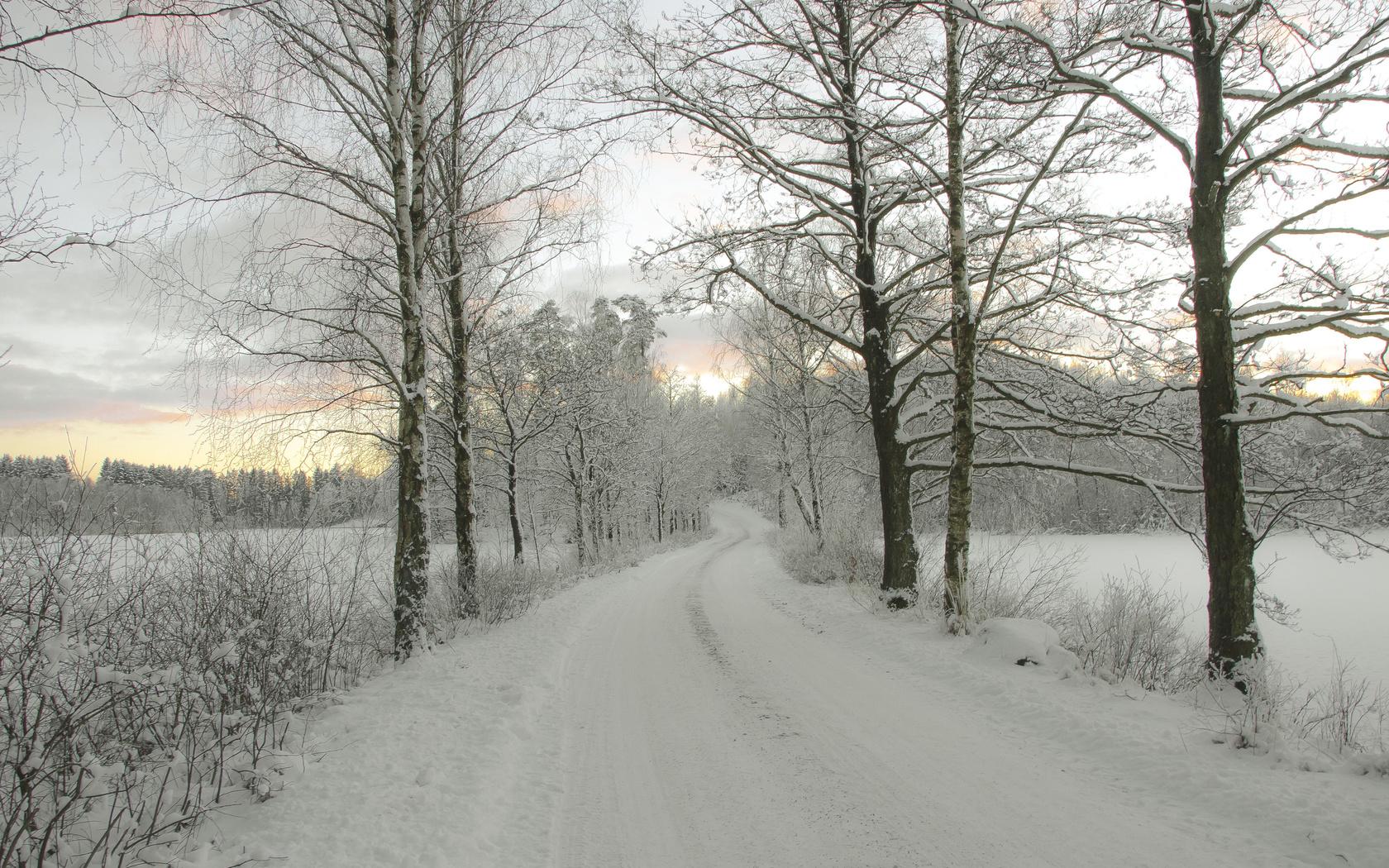 зима, дорога, деревья, закат, пейзаж