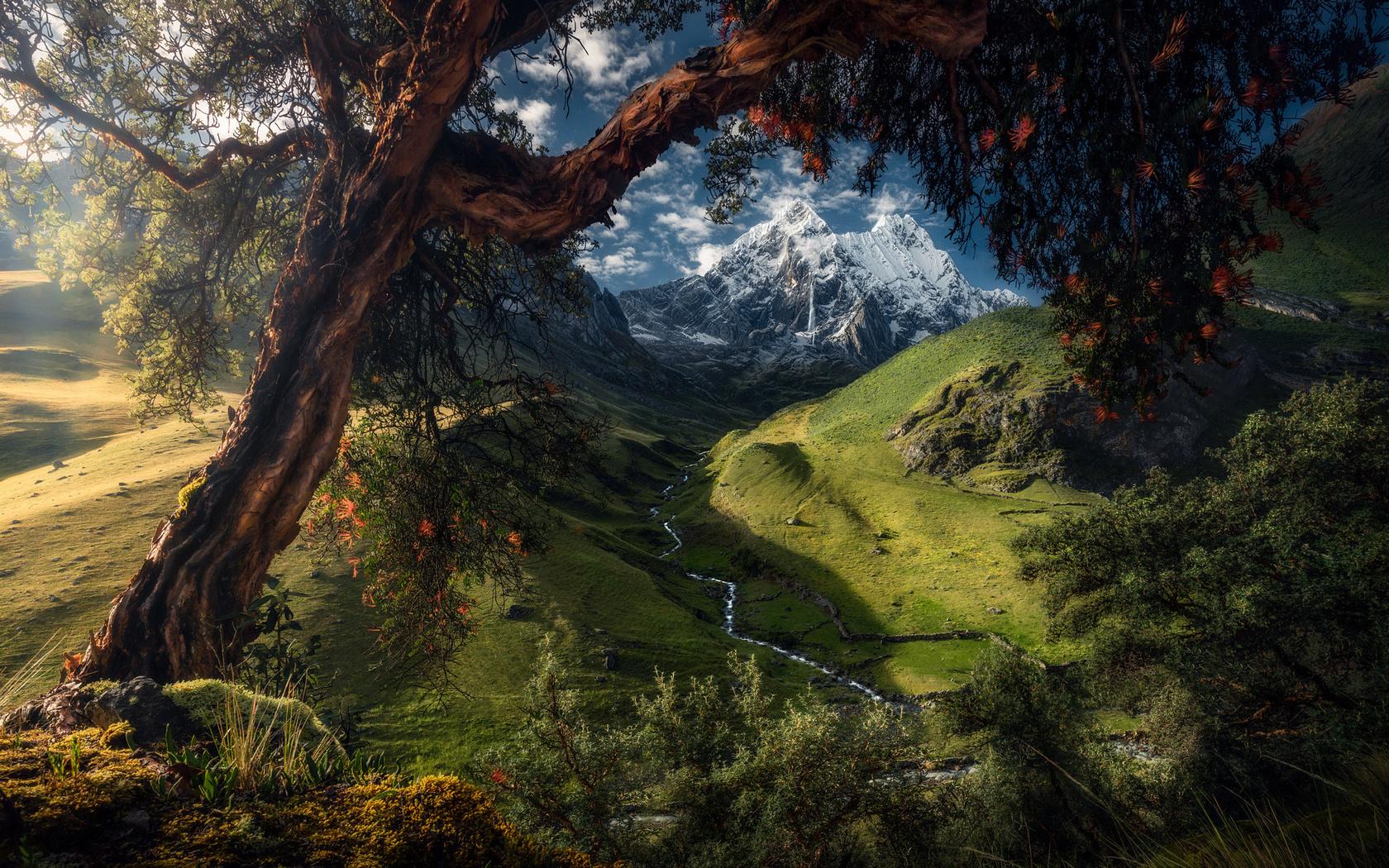 лето, деревья, пейзаж, горы, природа, долина, холмы, луга, перу, ледники, снега, max rive