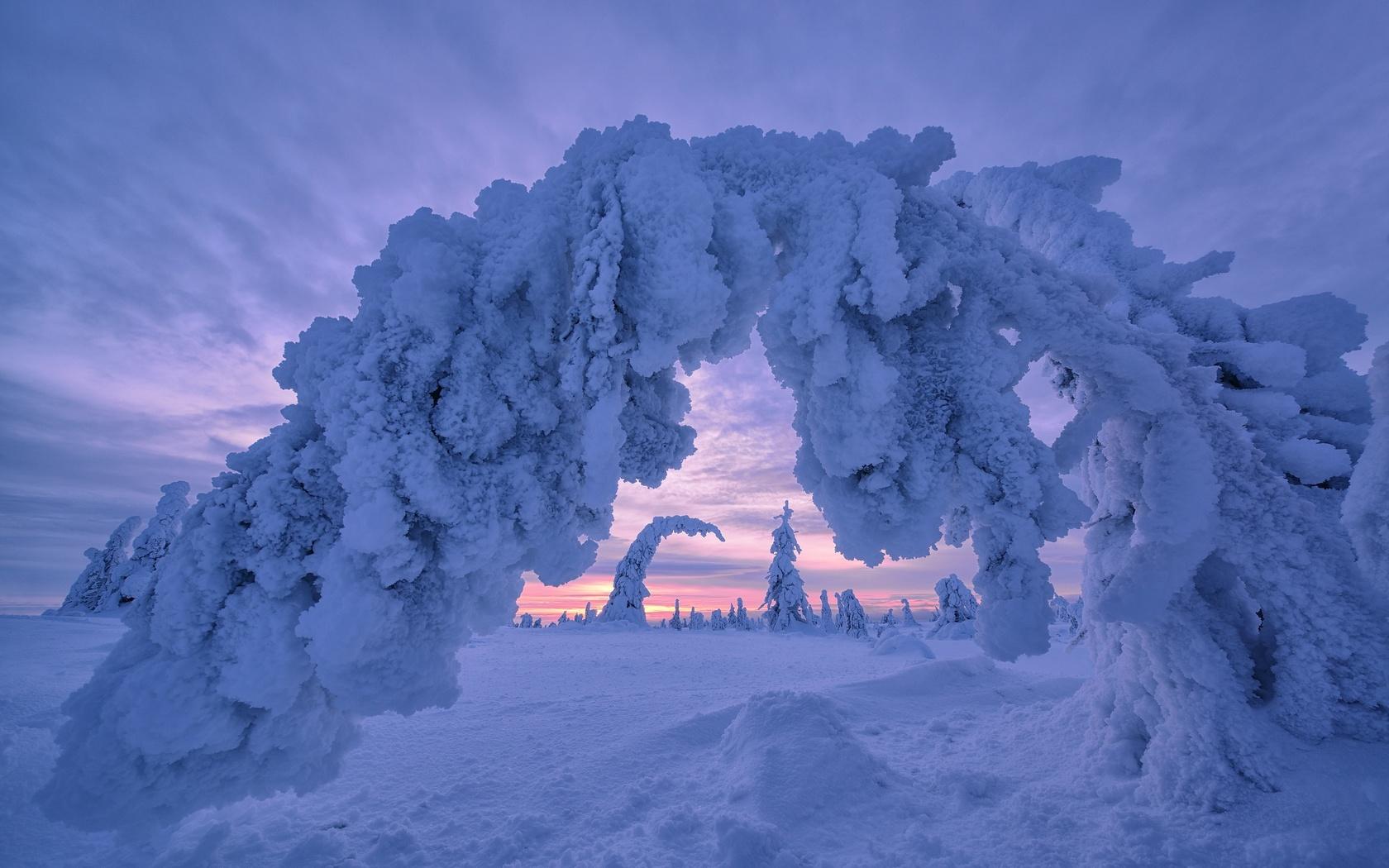 снег, зима, природа