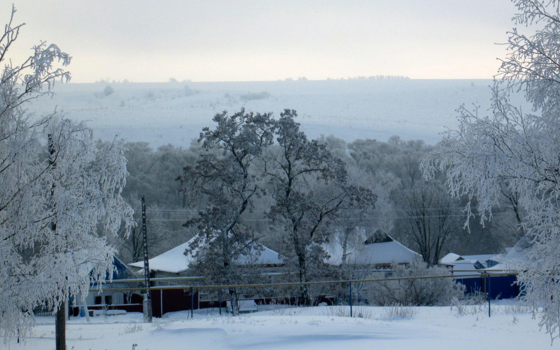 зима, деревня, иней, мороз