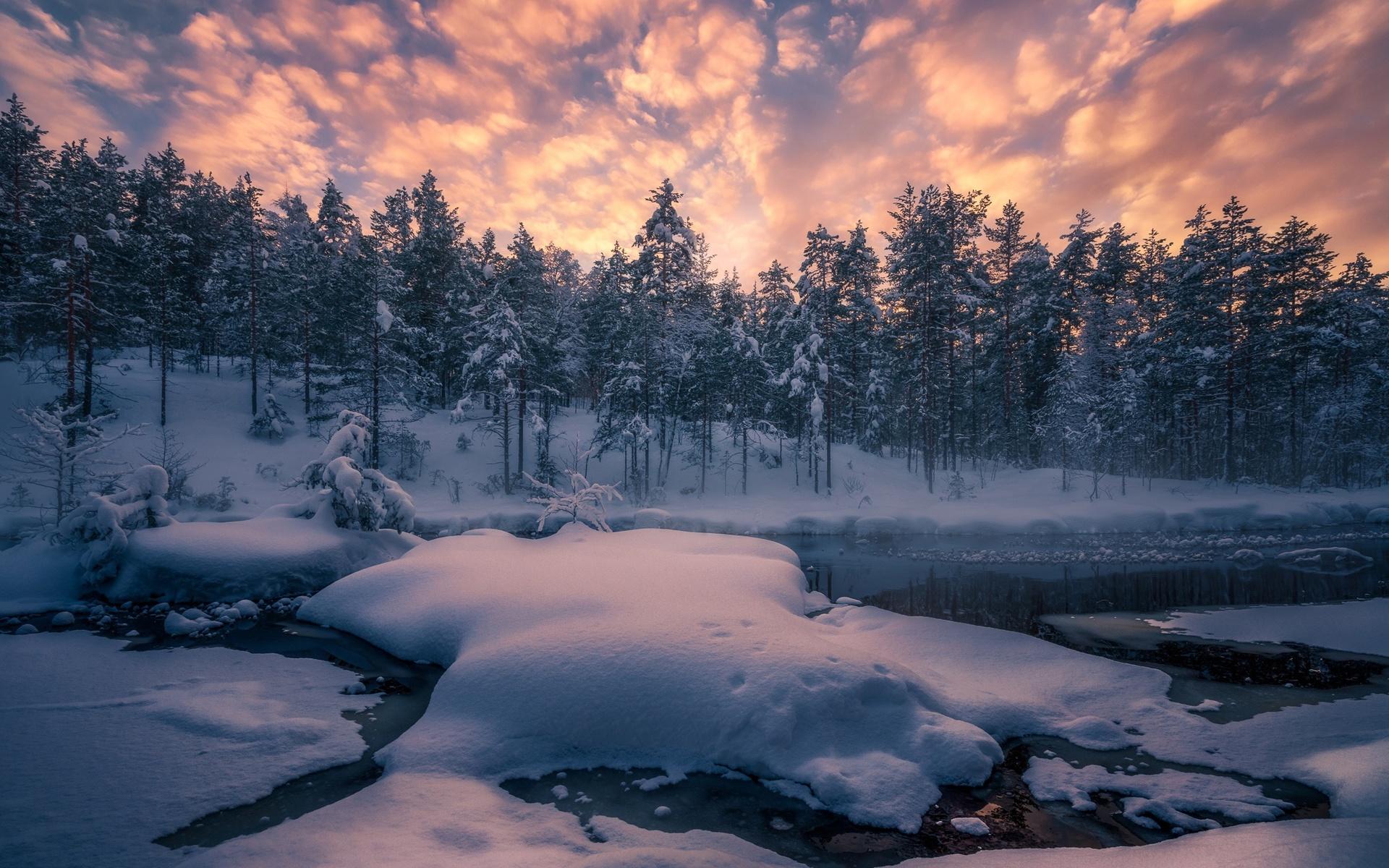 пейзаж, зима, зима, лес, снег, деревья, река, норвегия, сугробы, рингерике