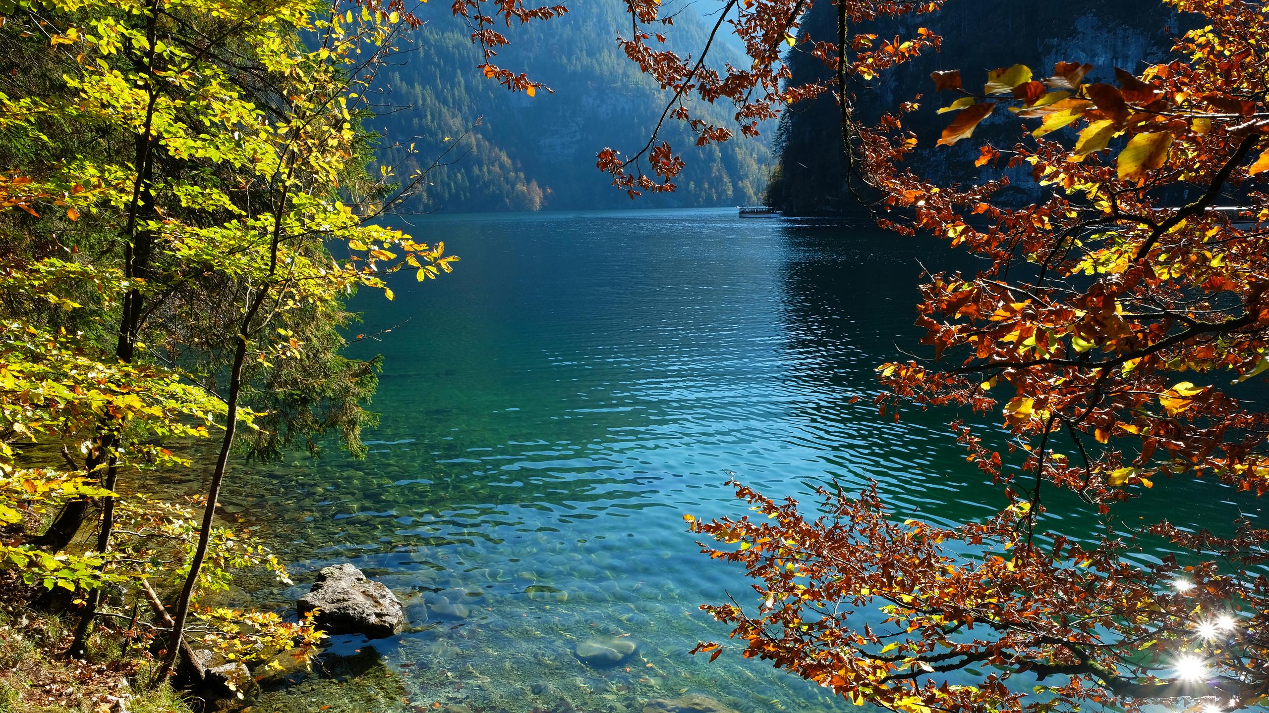 германия, озеро, осень, камни, konigsee, ветки, природа