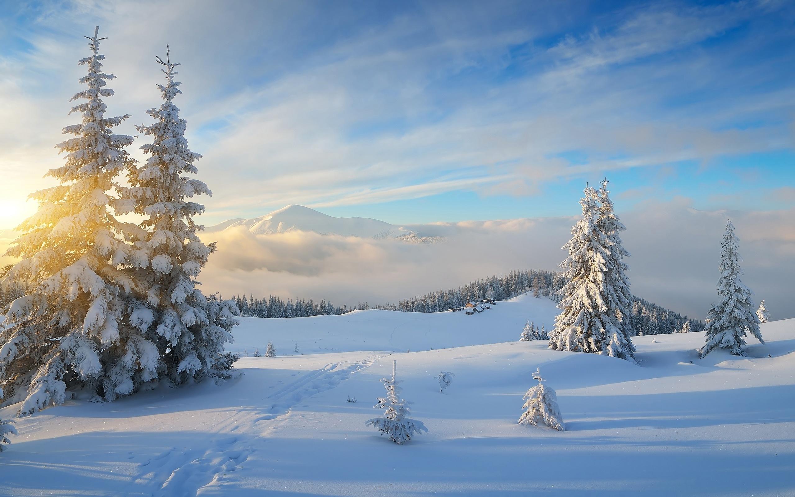 природа, пейзаж, зима, снег, горы, деревья, ели, лес, облака, следы, дома, деревня