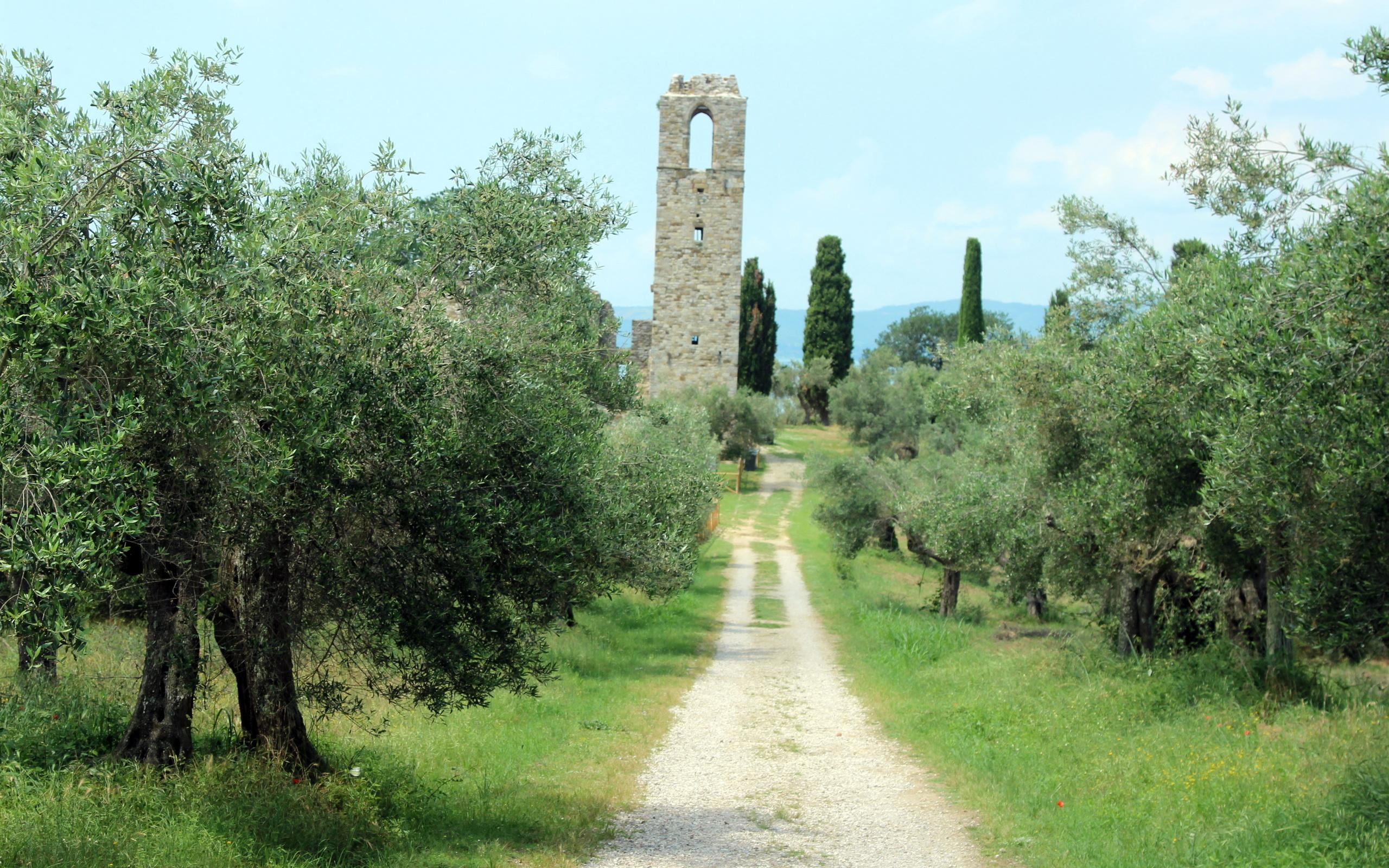 дорога, деревья, башня, пейзаж, италия