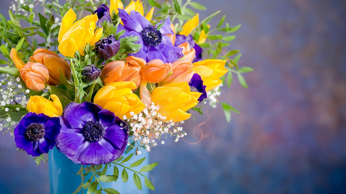 анемоны, тюльпаны, цветы, ваза