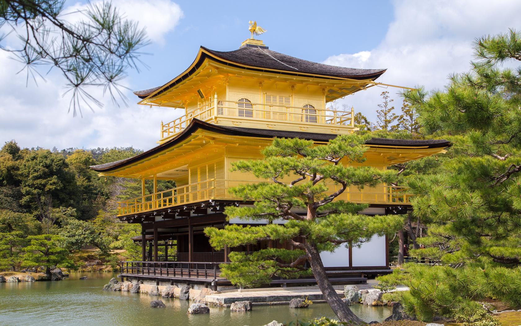 Япония, киото, храм kinkaku-ji temple, ель, город