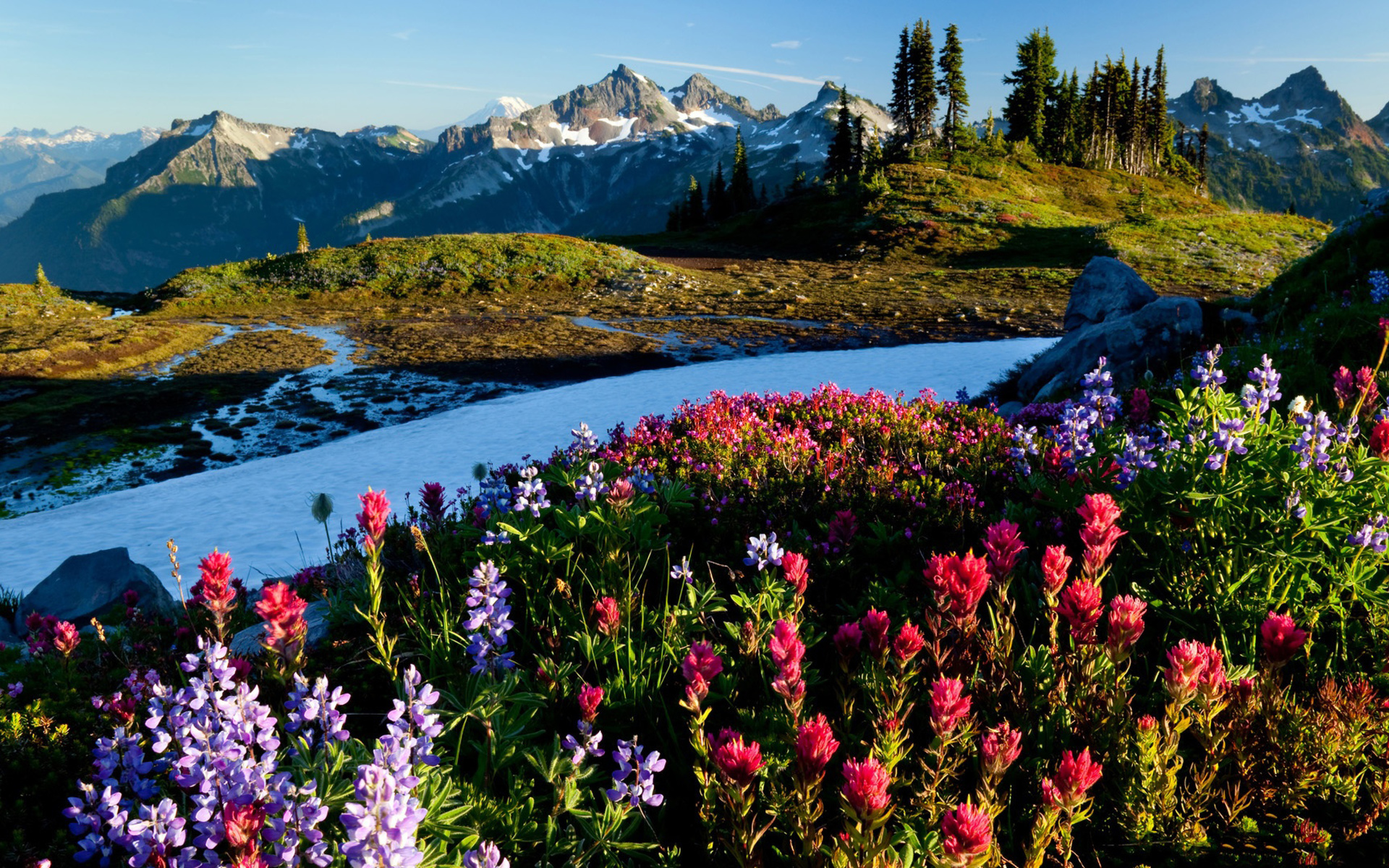 Красивые открытки с видом природы