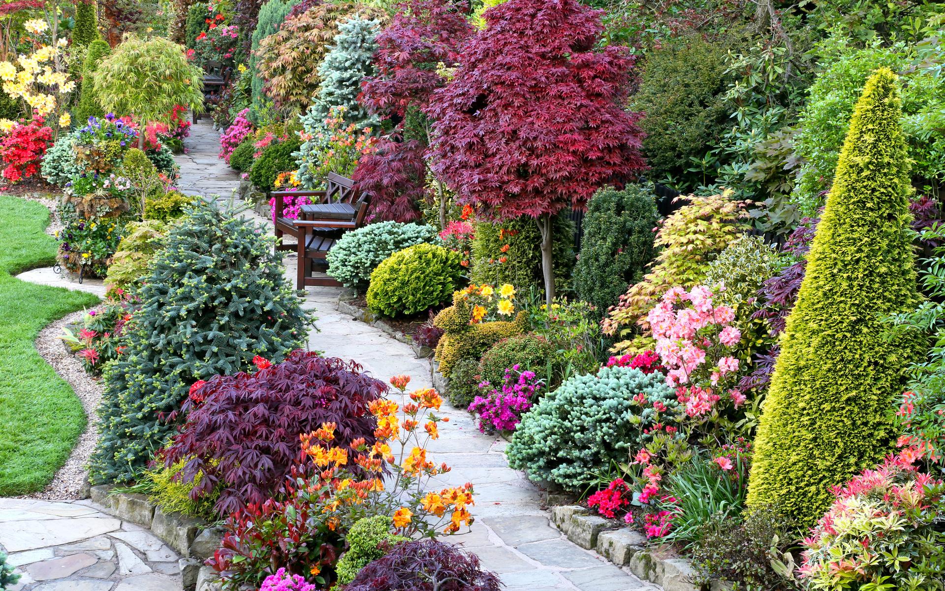 Купить самые красивые цветы для саду, цветов своими