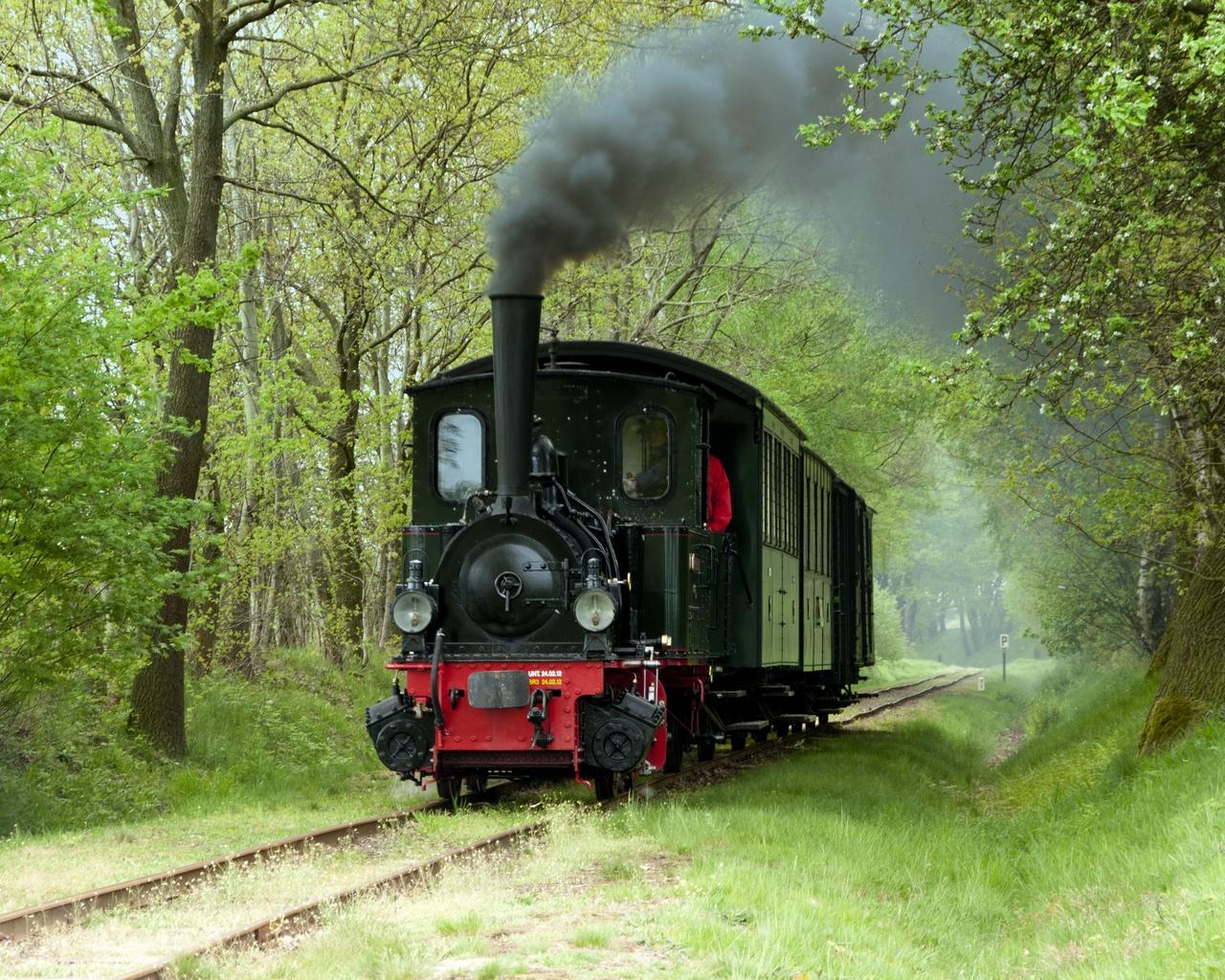 железные дороги, рельсы, трава, деревья, локомотив, ретро, дым