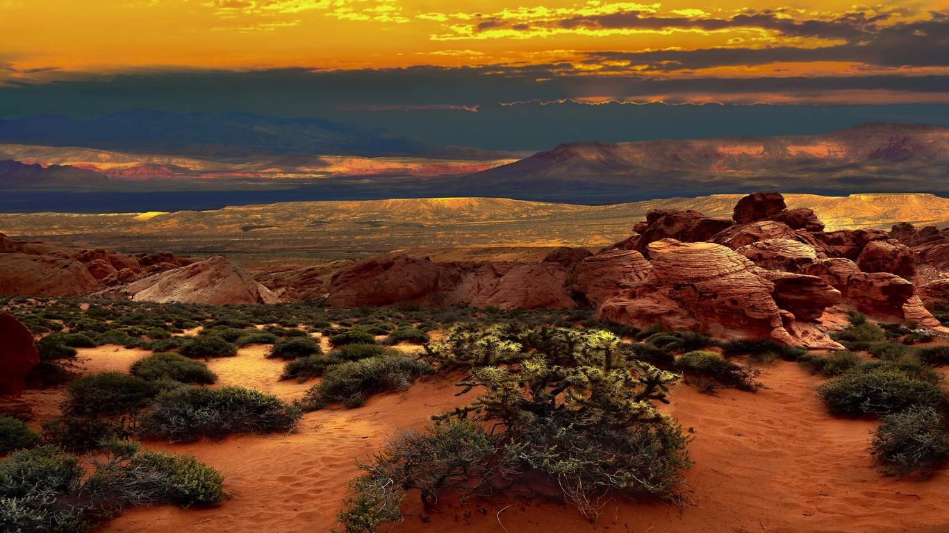невада, пустыня, жара