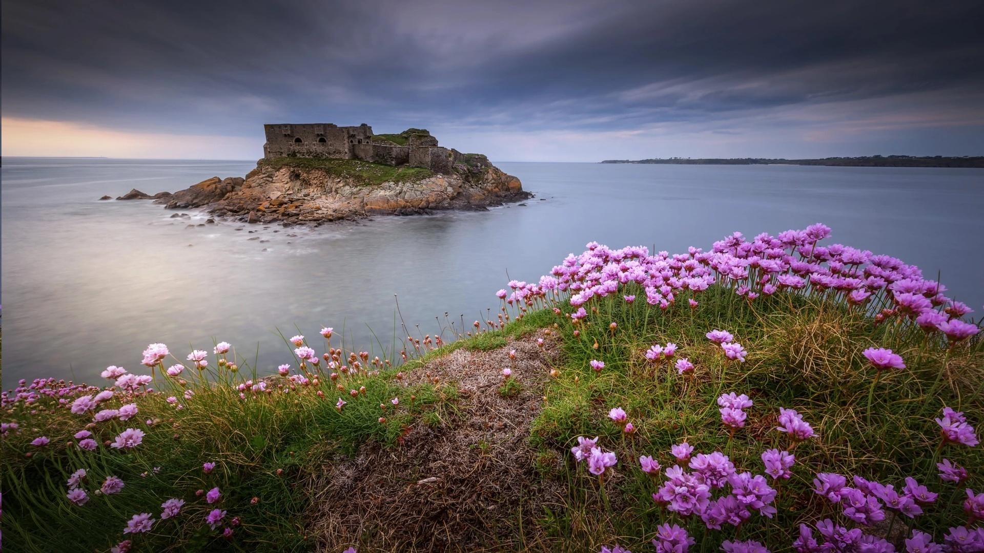 природа, пейзаж, море, островок, скалы, развалины, берег, цветы