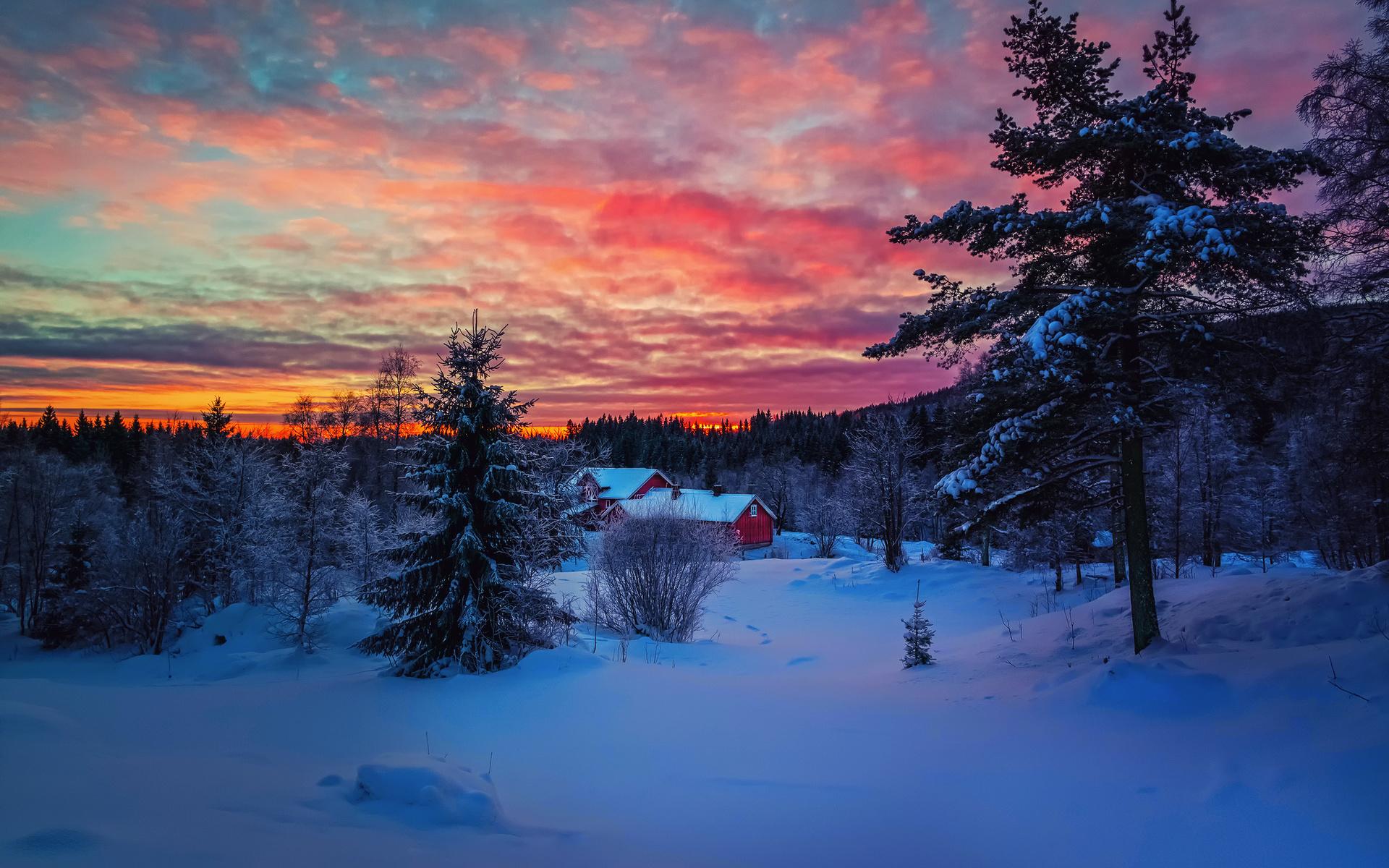 Красивые картинки зима