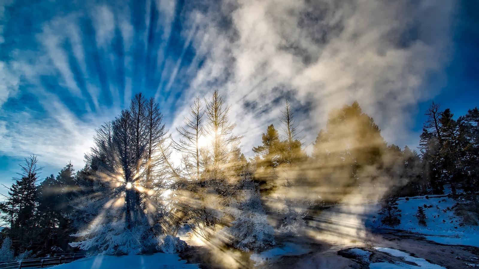 природа, пейзаж, зима, деревья, снег, солнце, лучи