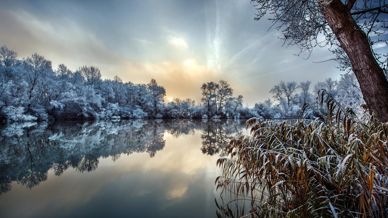 зима, иней, трава, деревья, природа, озеро, robert didierjean