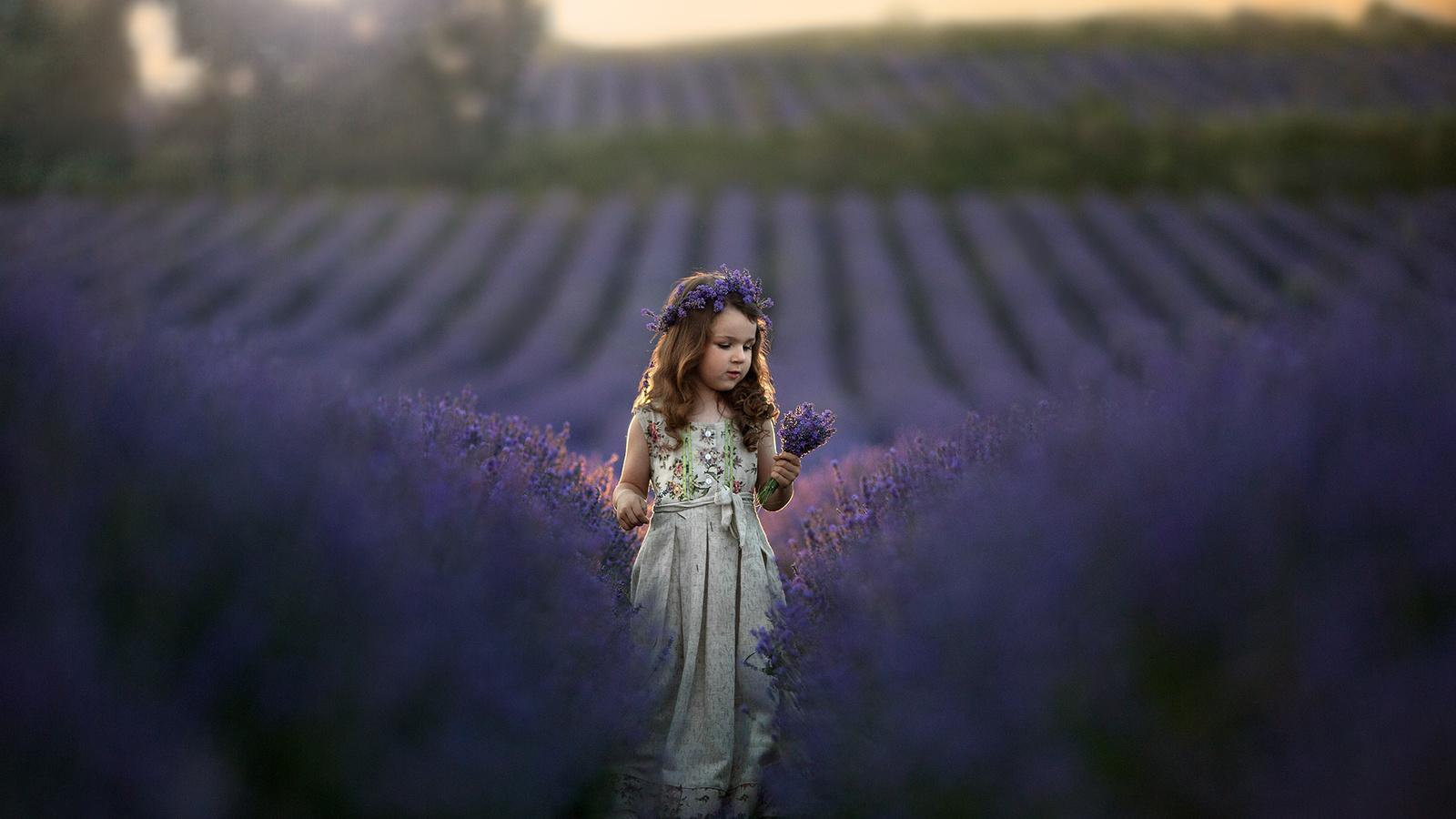 поле, природа, платье, девочка, венок, ребёнок, букетик, лаванда, кудрова татьяна