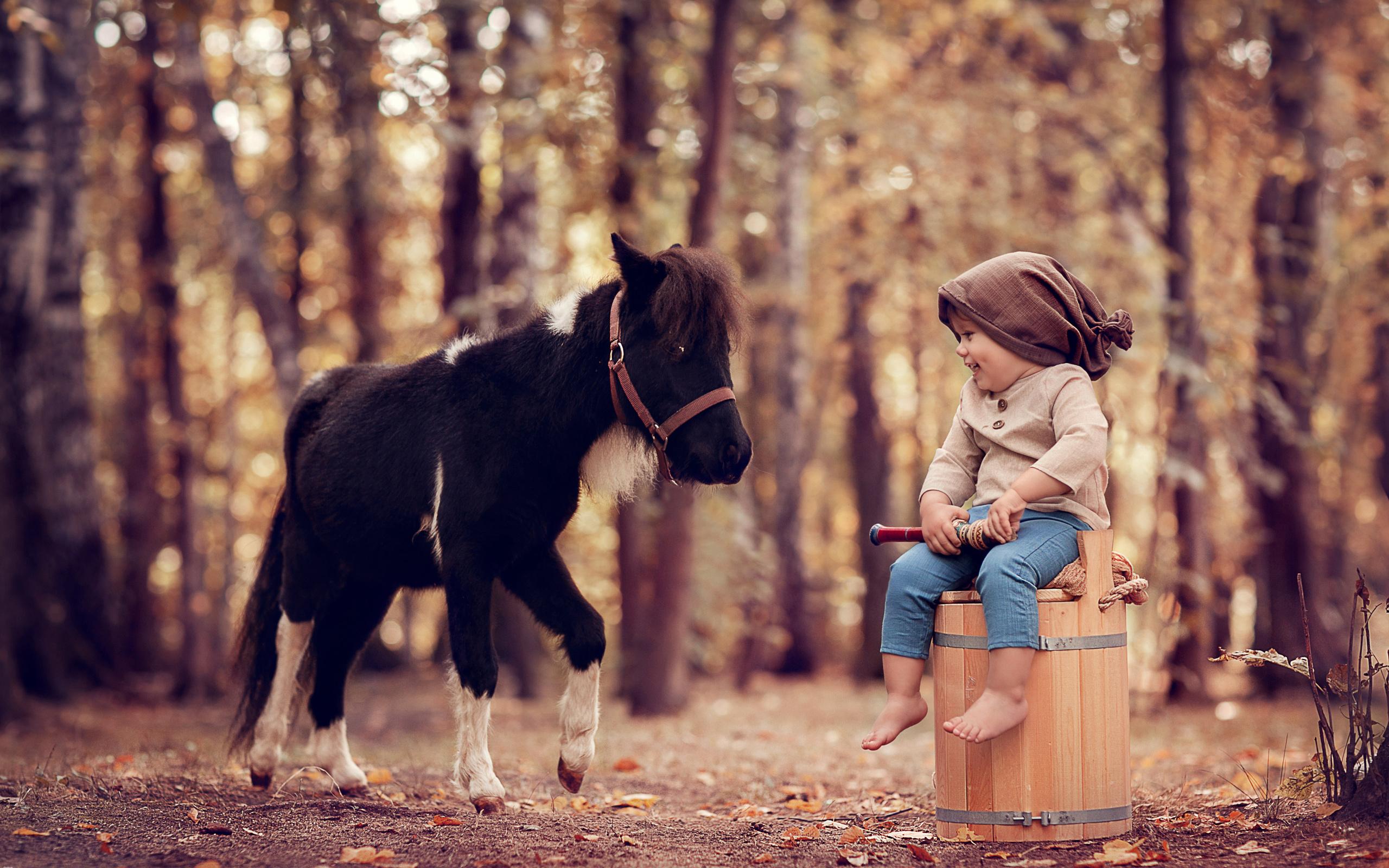 осень, лес, деревья, природа, улыбка, животное, мальчик, малыш, ведро, пони, ребёнок, дудка, боке, анна ипатьева