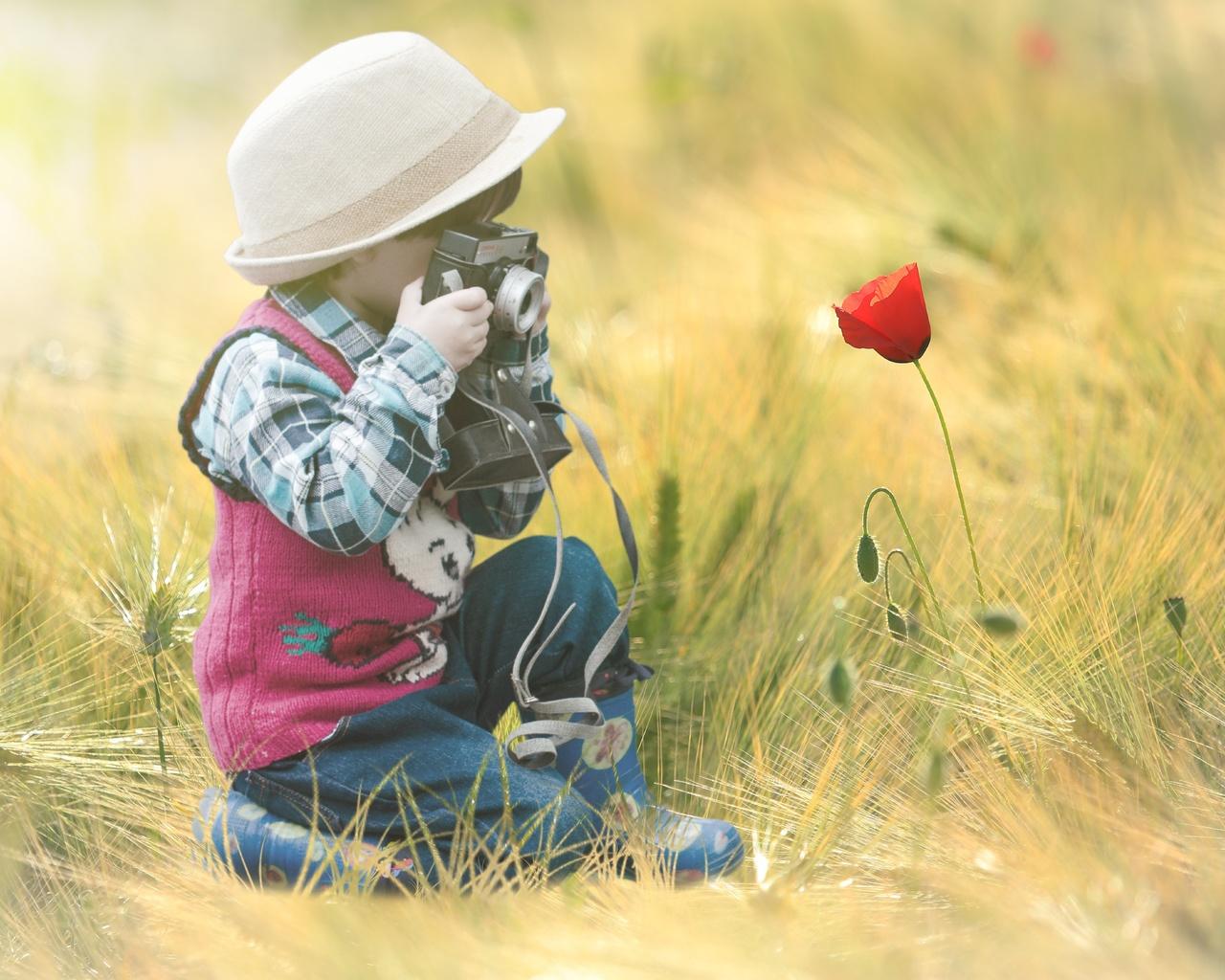 цветок, поле, ребенок