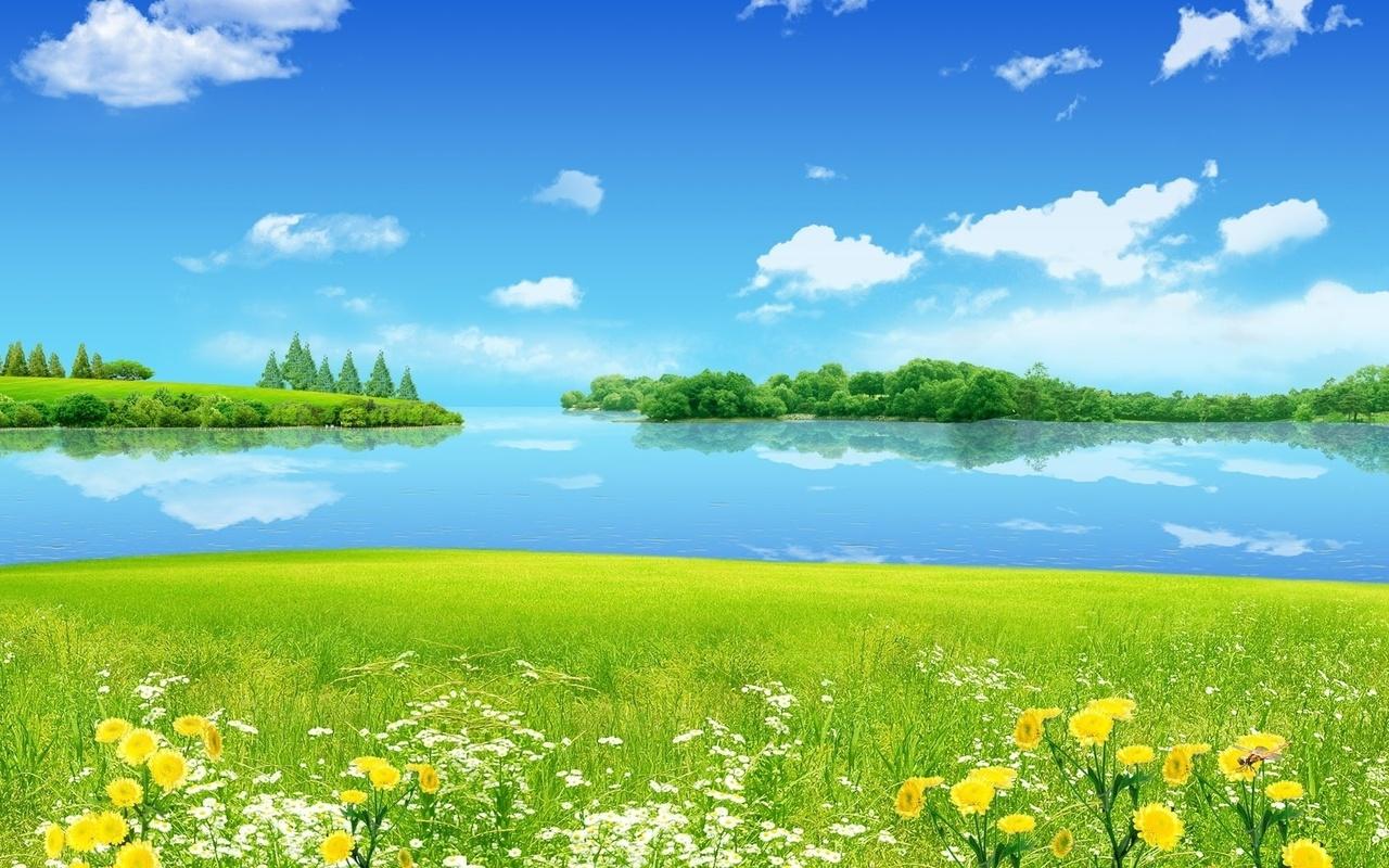 Февраля день, картинка с полянкой