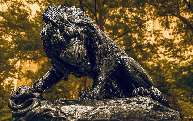 лев, зверь