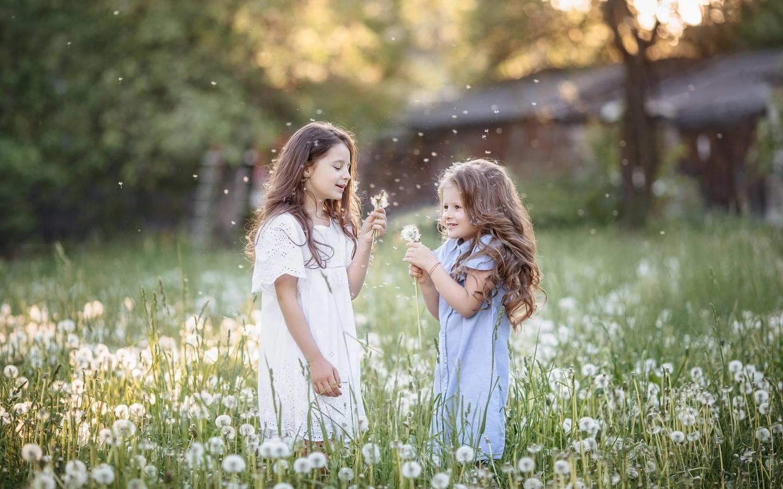 дети, девочки, подружки, природа, лето, лужайка, одуванчики