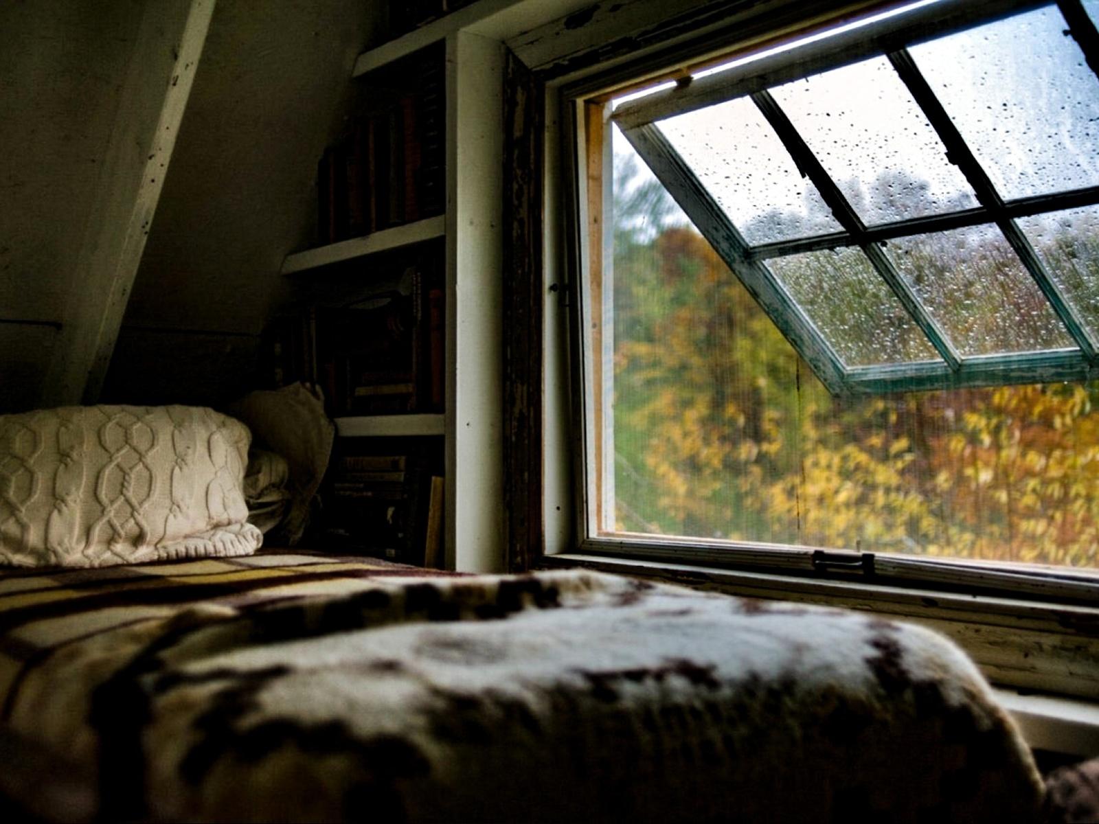 теплые цвета, осень, кровать, дождь