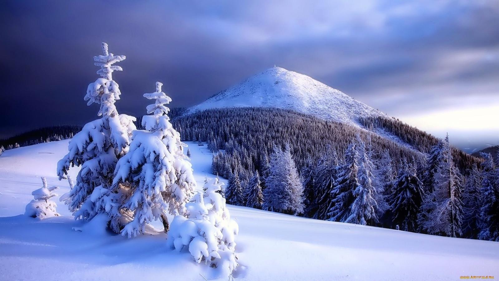 снег, деревья, небо, гора