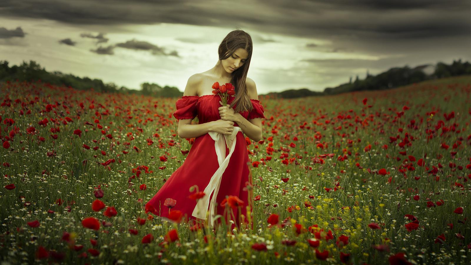 Девушка на маковом поле картинка