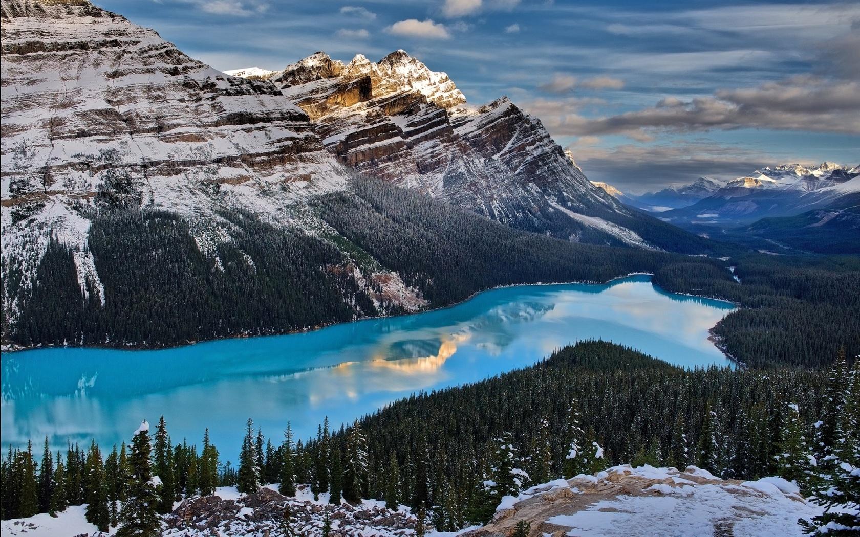 озеро пейто, канада.горы, снежная гора.озеро бирюза, лес.деревья