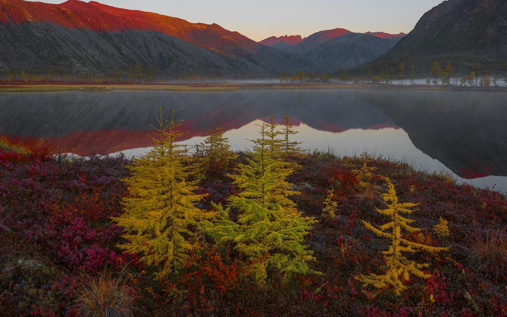 осень, пейзаж, горы, природа, озеро, отражение, растительность, утро, ёлочки, владимир рябков, колыма, озеро джека лондона