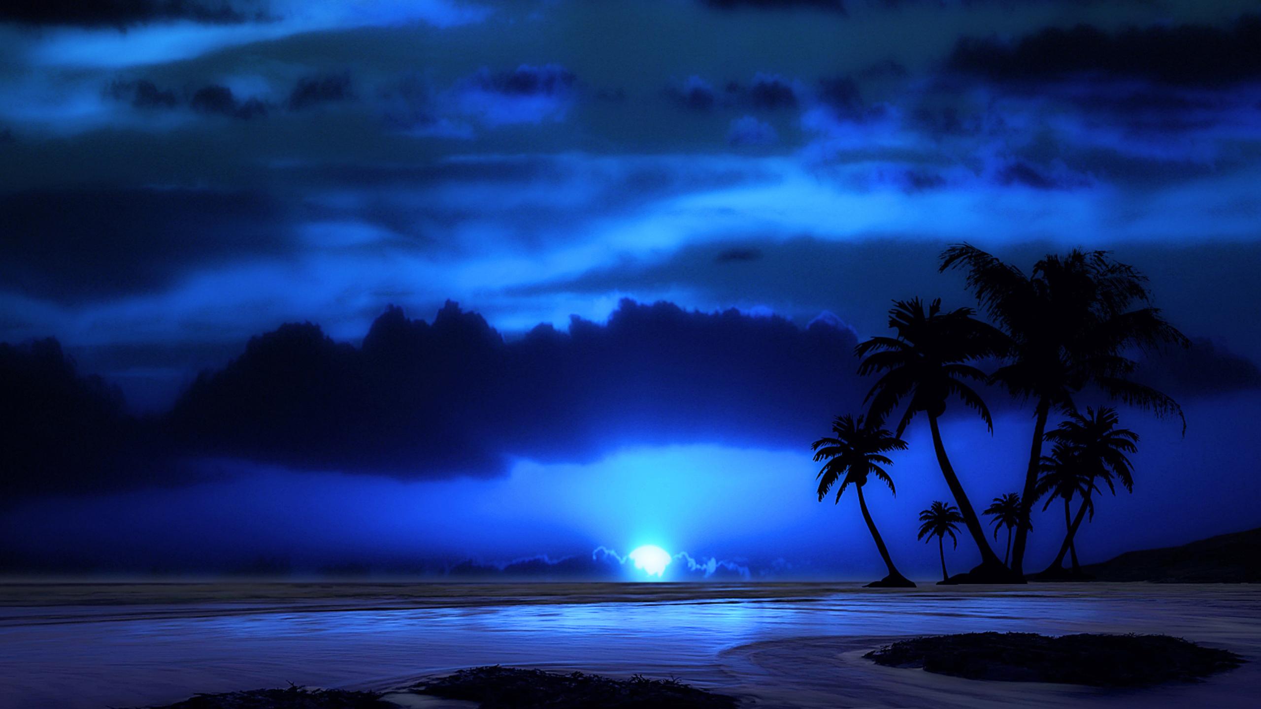природа, пейзаж, тропики, тропический, пальма, пальмы, вода, море, морской, океан, океанский, берег, побережье, луна, лунный, остров, скала, скалы, небо, небесный, свет