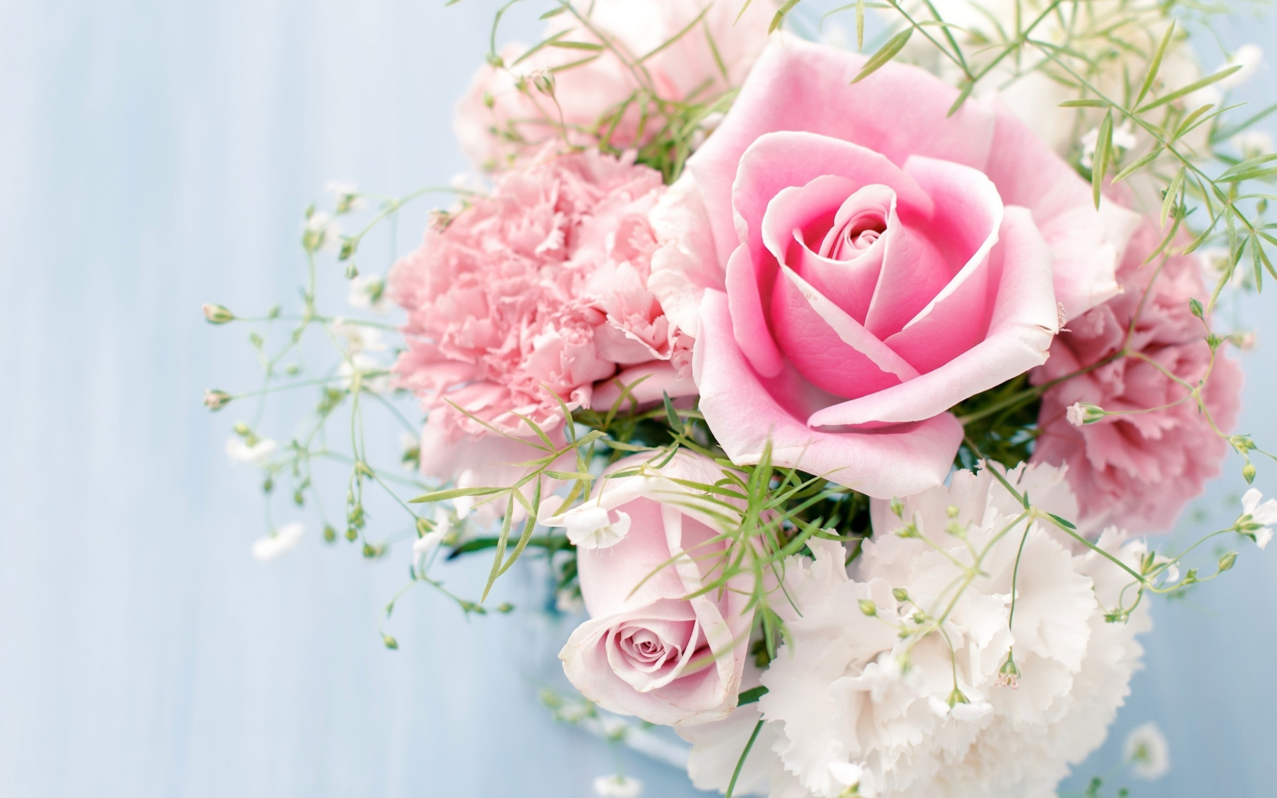 Открытки без надписей с розами