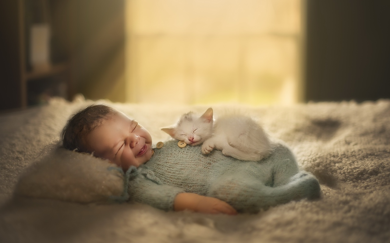 ребёнок, малыш, младенец, котёнок, животное, детёныш, сон, кровать