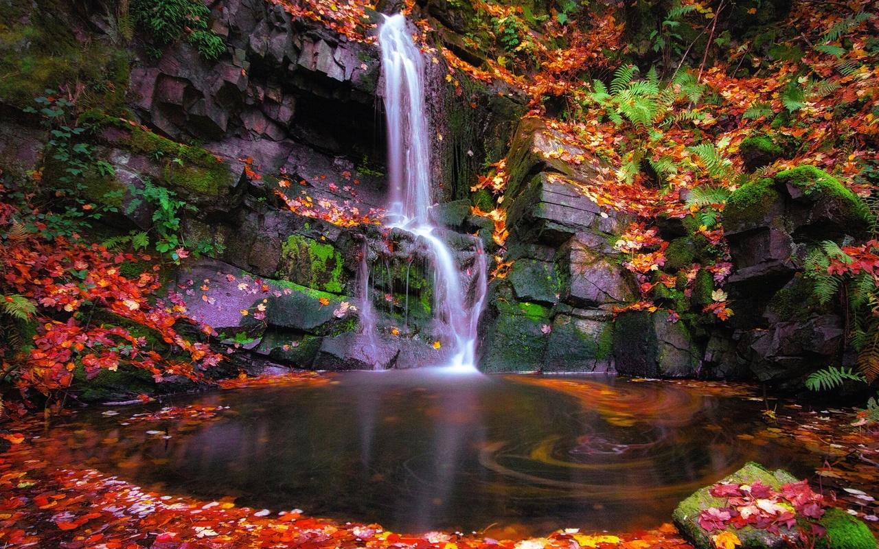 водопад, скалы, осенние листья, течение