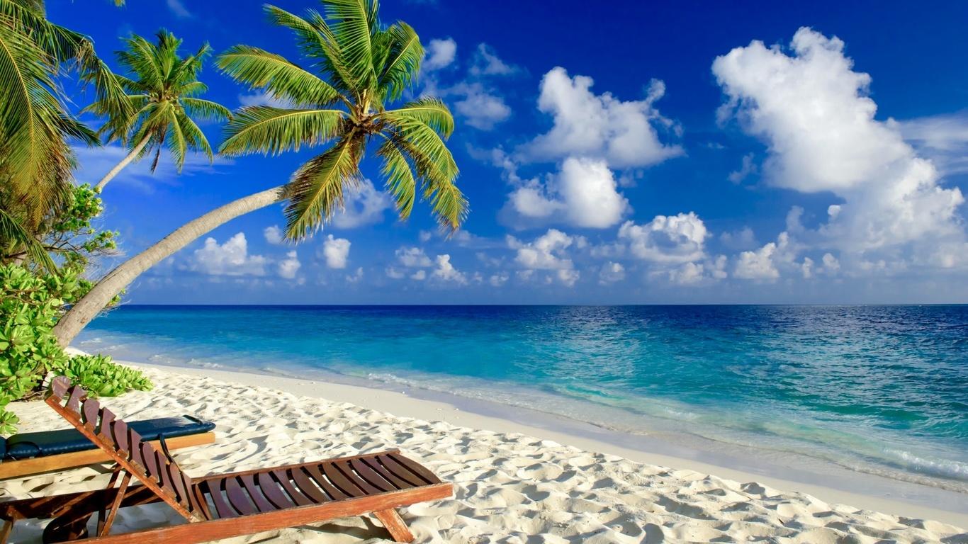 тропики, природа, океан, пальмы, красиво
