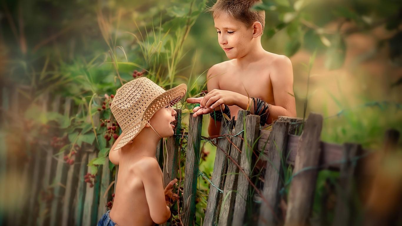 дети, мальчики, друзья, игра, природа, лето, забор