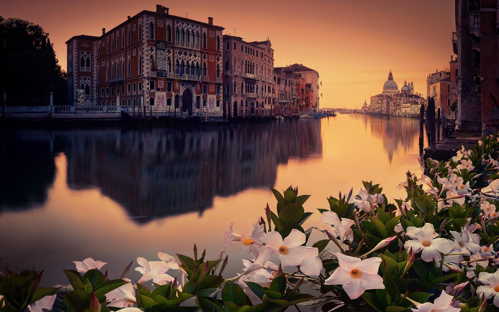 город, венеция, италия, канал, вода, здания, цветы, вечер