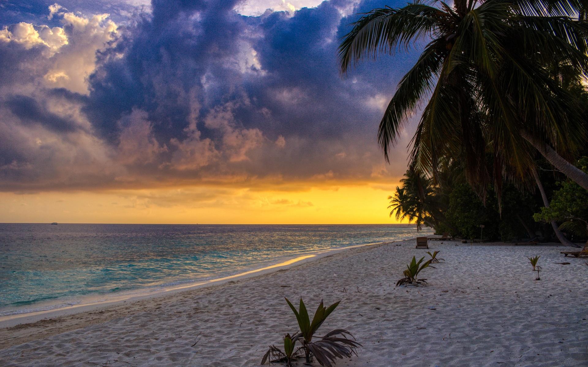 океан, пляж, пальмы, закат