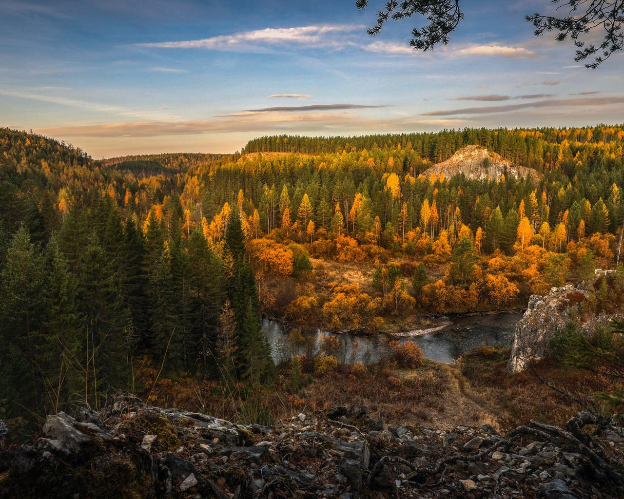 деревья, пейзаж, горы, природа, река, ели, леса
