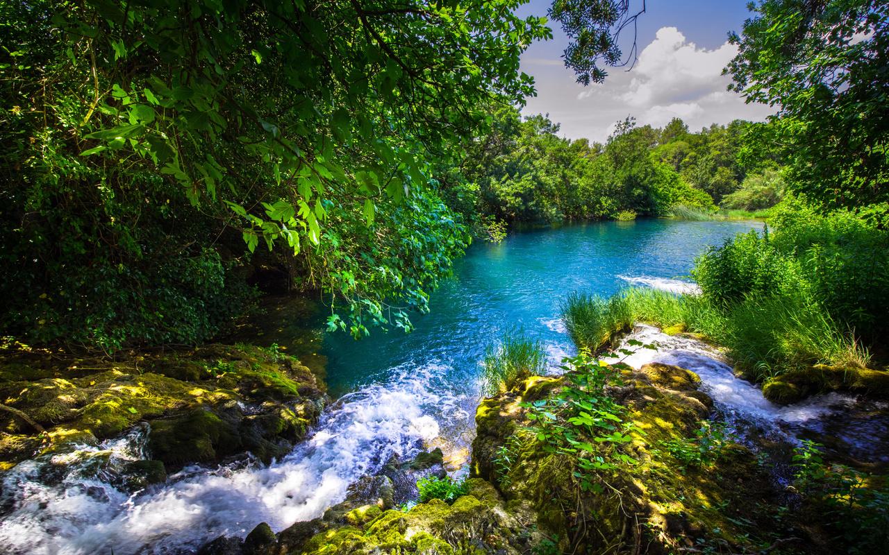 krka river, forest, river, beautiful landscape, krka national park, croatia