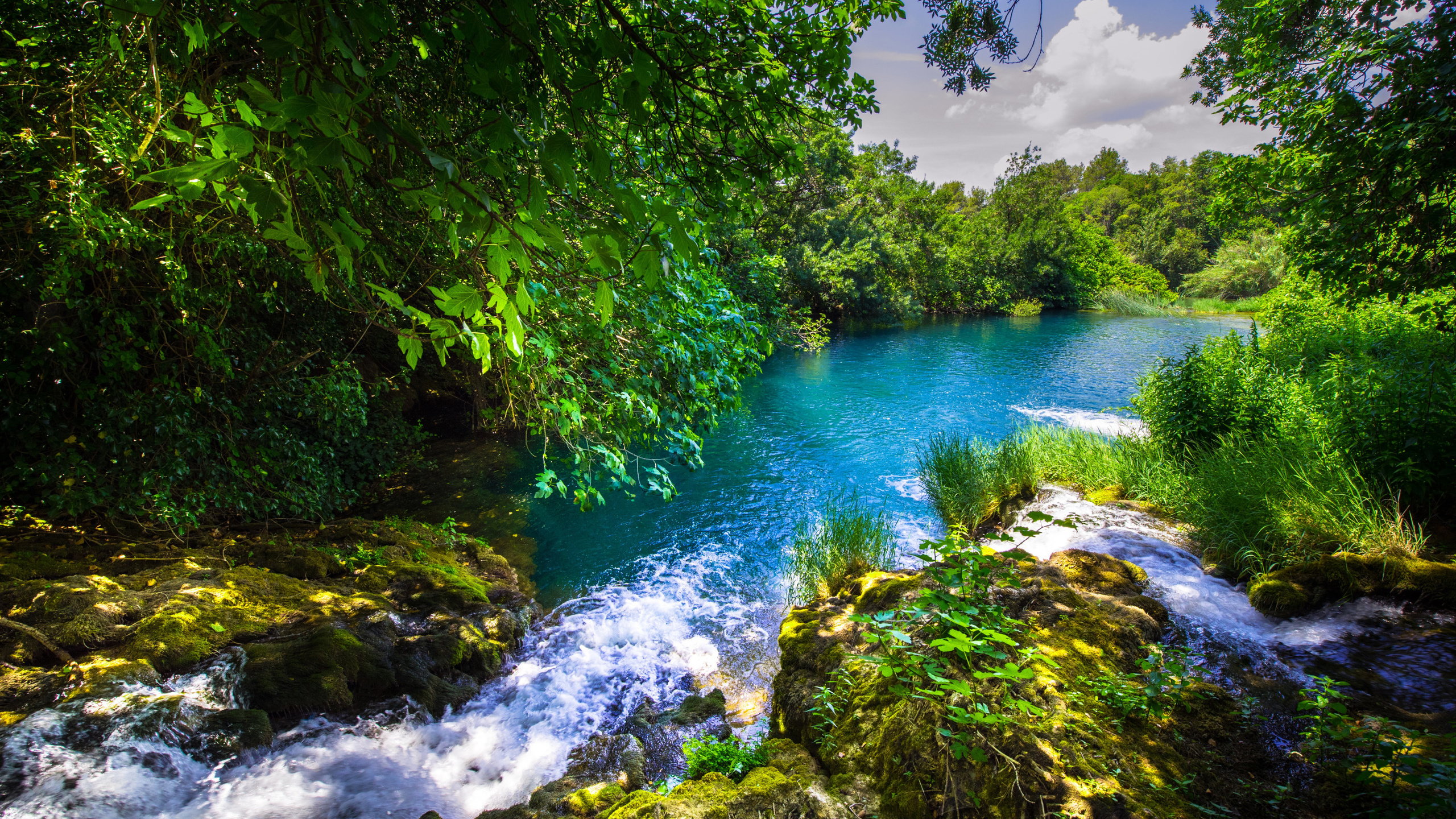 krka river, forest, river, beautiful landscape, krka national park, croatia