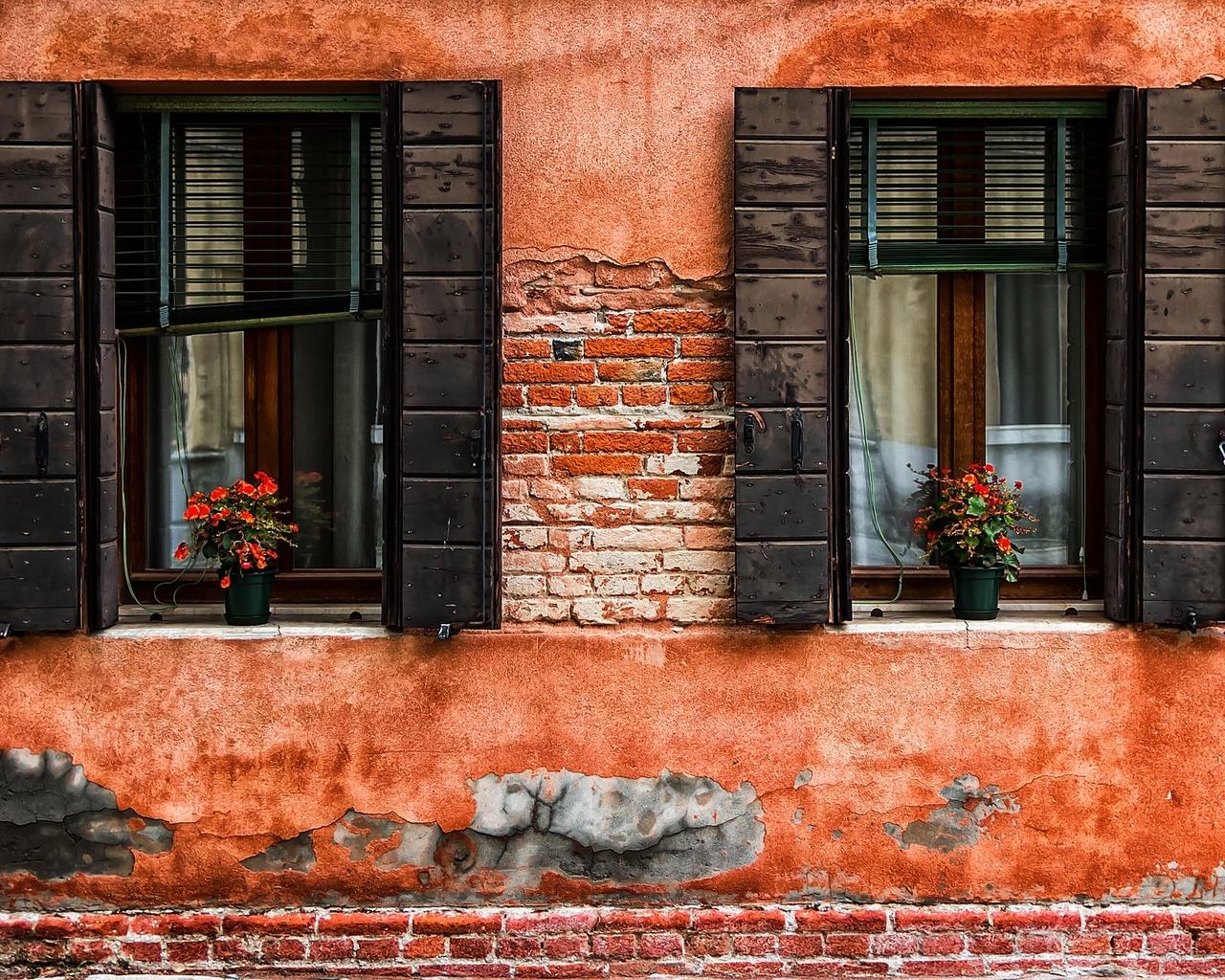 окно, дом, цветы, здание