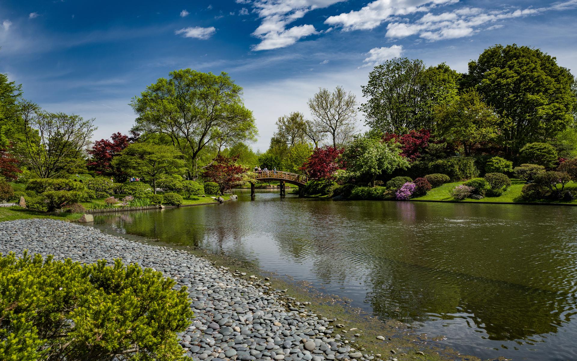 парк, река, мостик, камни