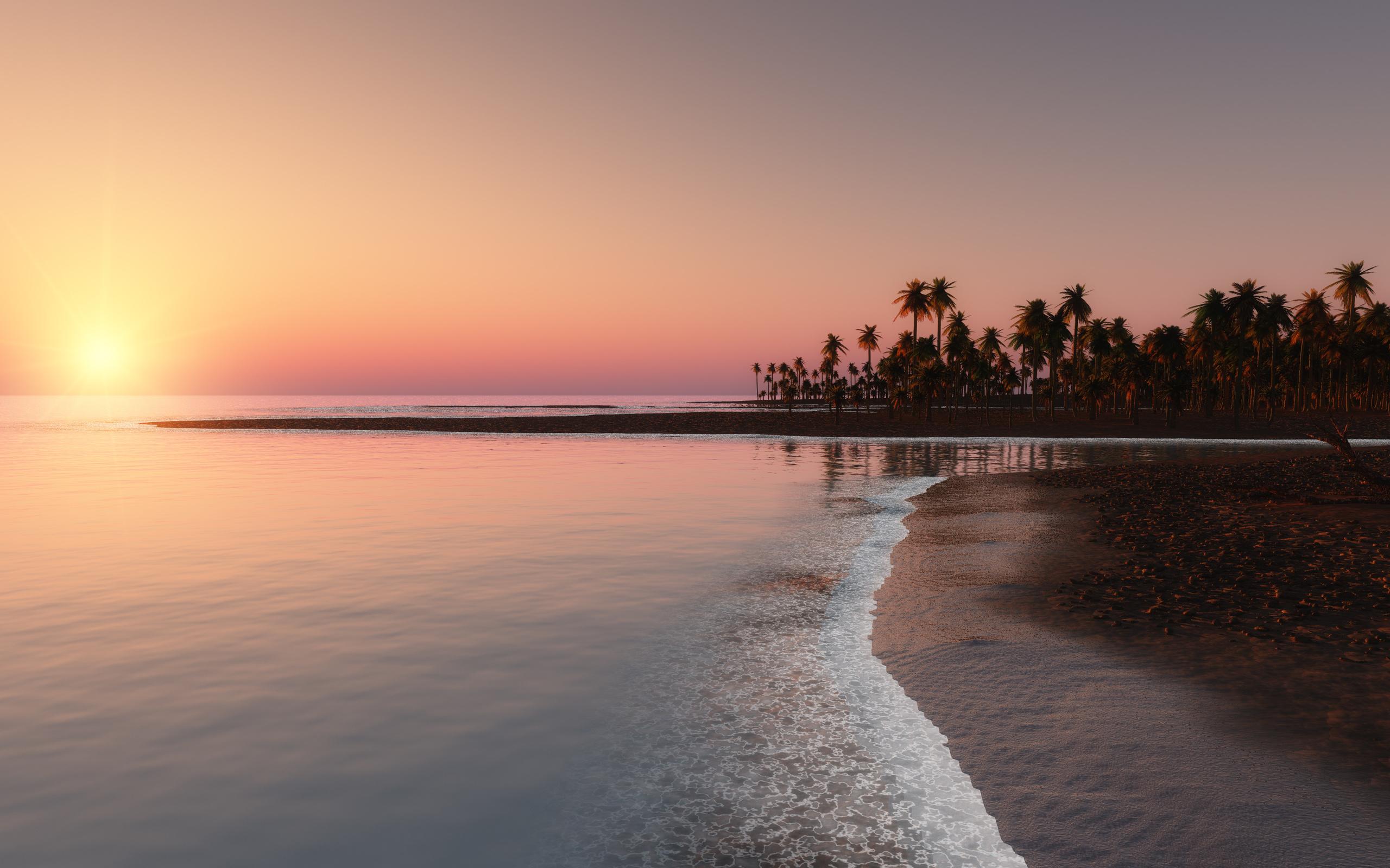 берег, розовый, закат, пальмы