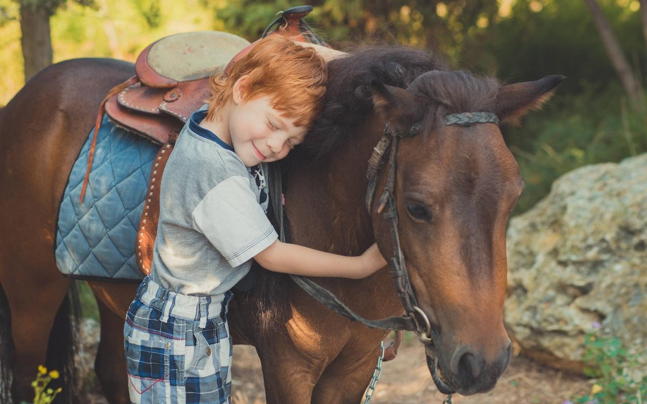 мальчик, пони, друзья