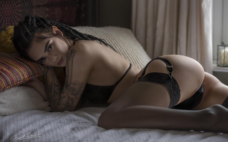 jack russell, девушка, брюнетка, черное бельё, кровать, подушки, шторы