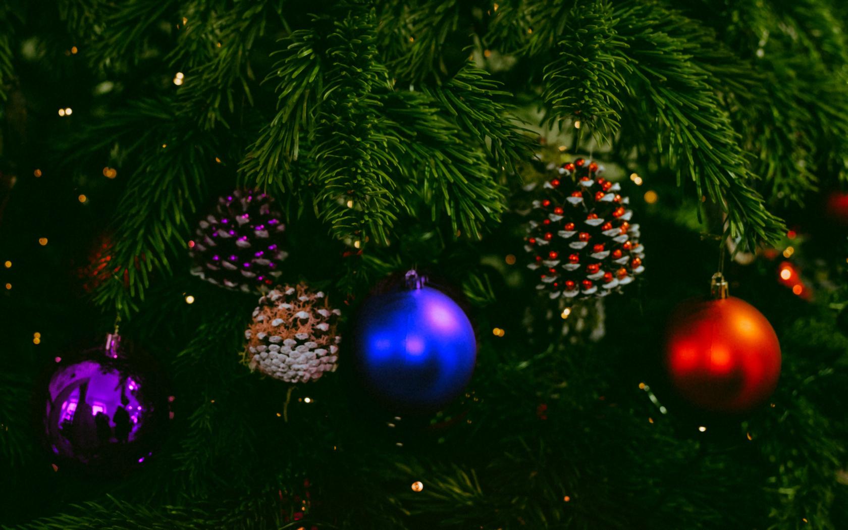 игрушки, хвоя, праздник, новогодний