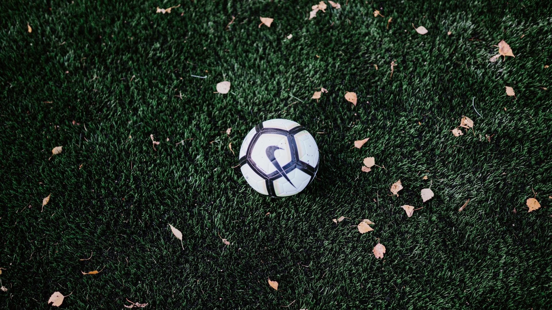 мяч, листья, газон