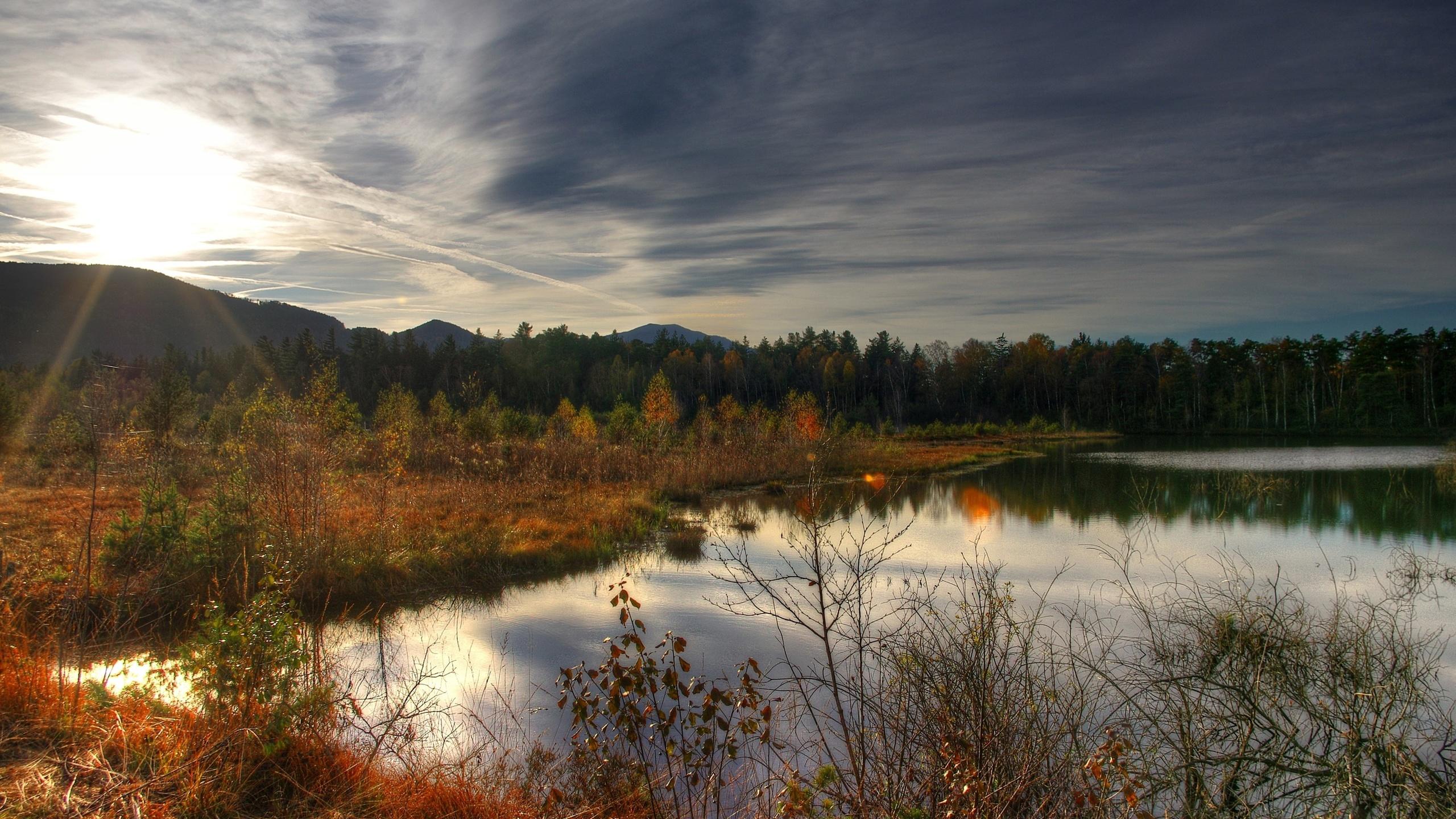 осень, озеро, деревья, трава, закат