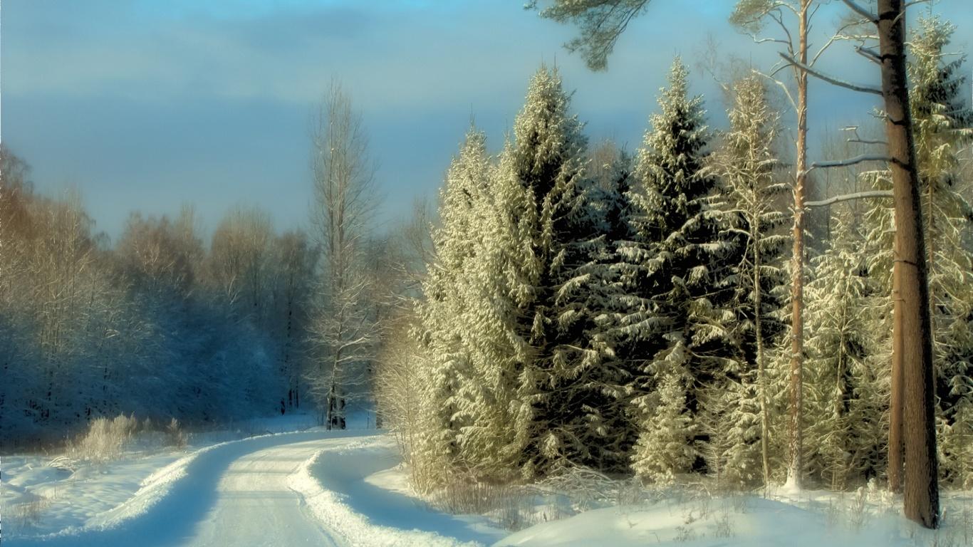 природа, пейзаж, лес, зима, снег, дорога