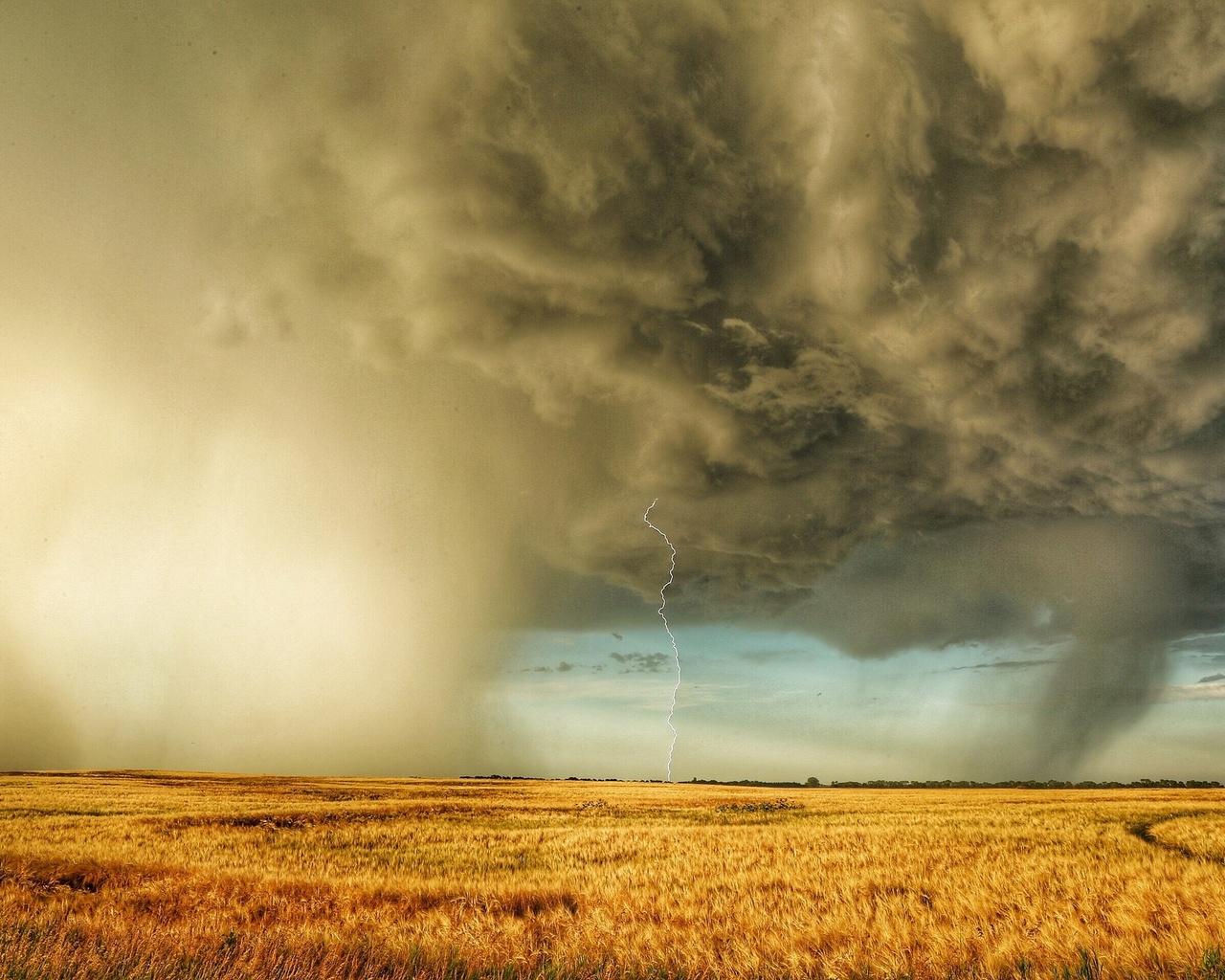 поле, гроза, молния